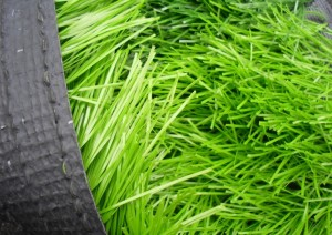 artificial grass rolled