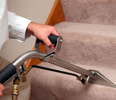 Carpet Cleaning 24
