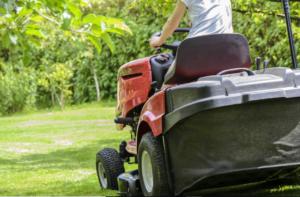 grass garden care